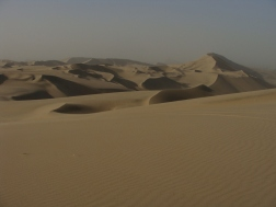 Dunes for days