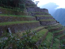 Intipata Terraces of the Sun