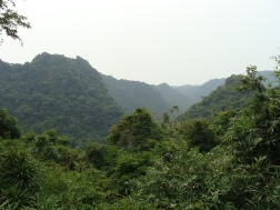 Jungle views in Cat Ba National Park